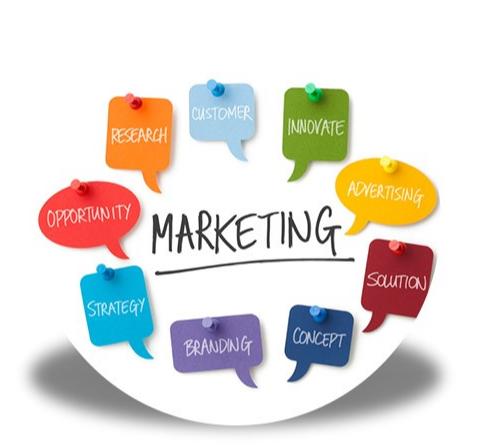 Tuyển Chuyên viên Marketing